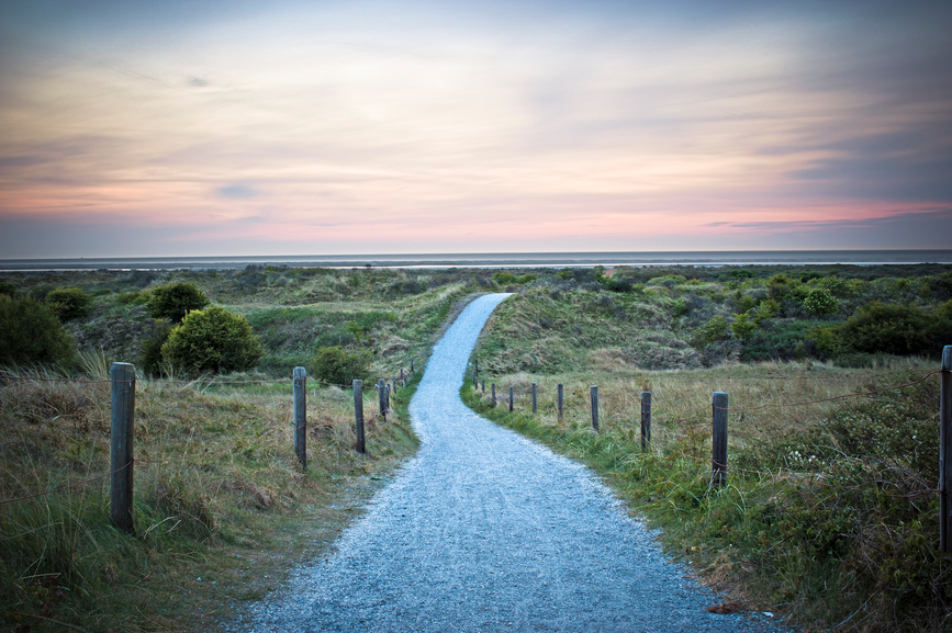 path to data-driven insights